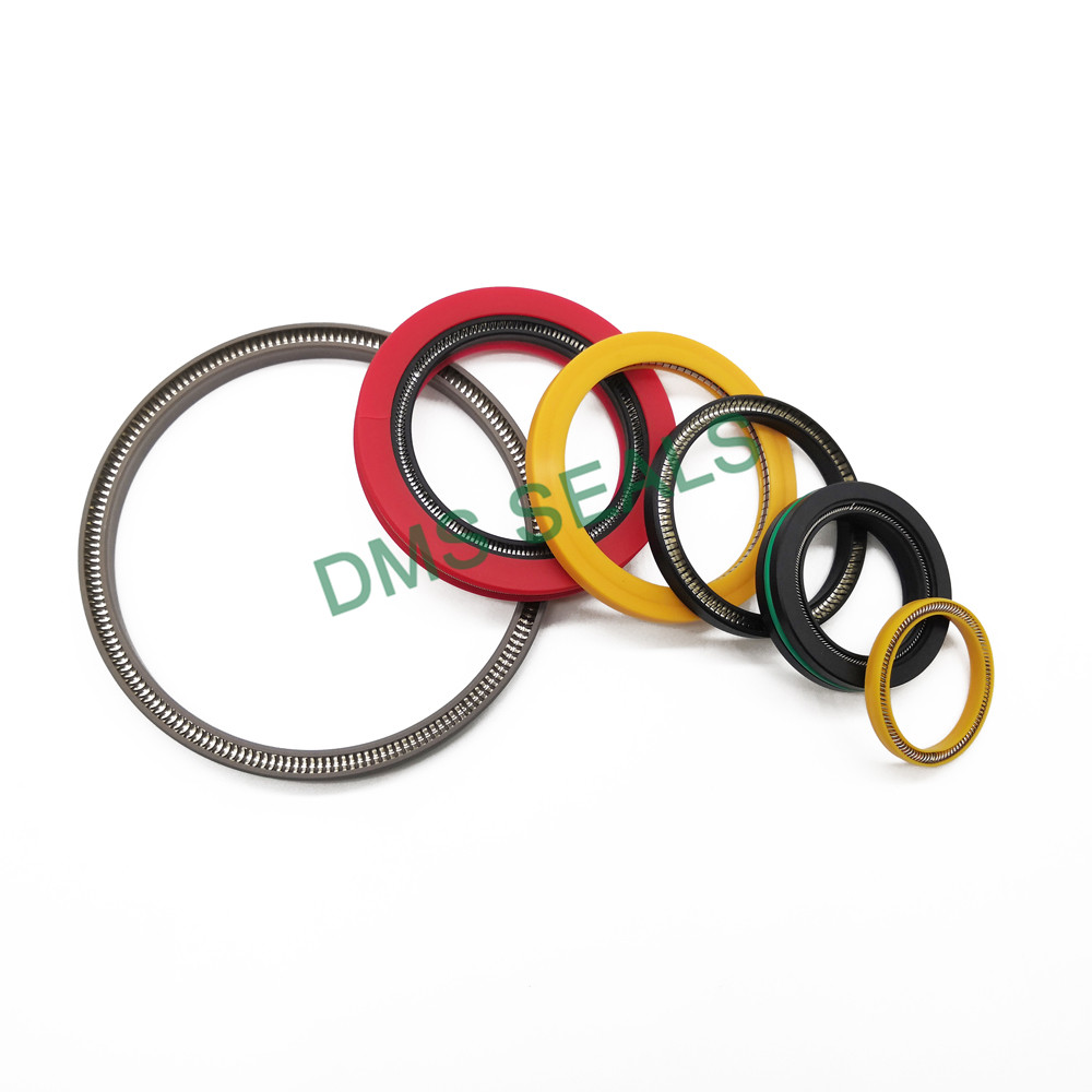 news-DMS Seals-mechanical shaft seals springs Supply for reciprocating piston rod or piston single a