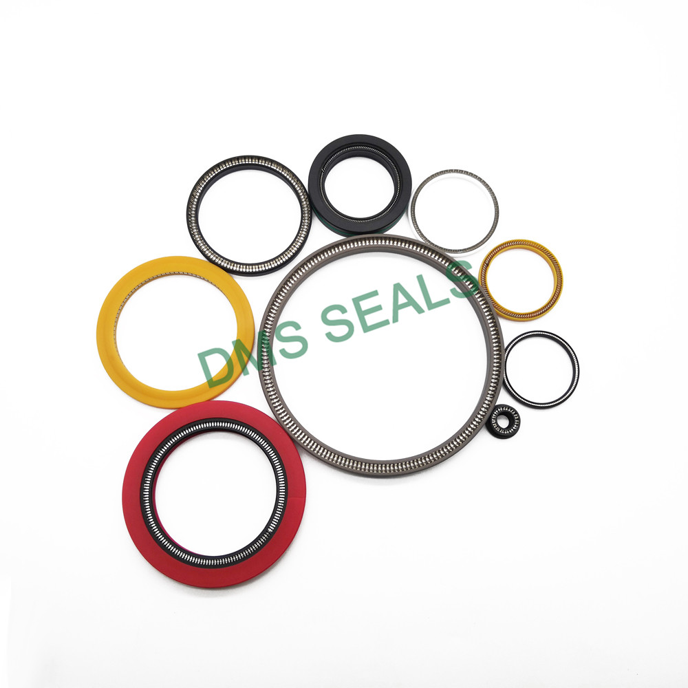 mechanical shaft seals springs Supply for reciprocating piston rod or piston single acting seal-1