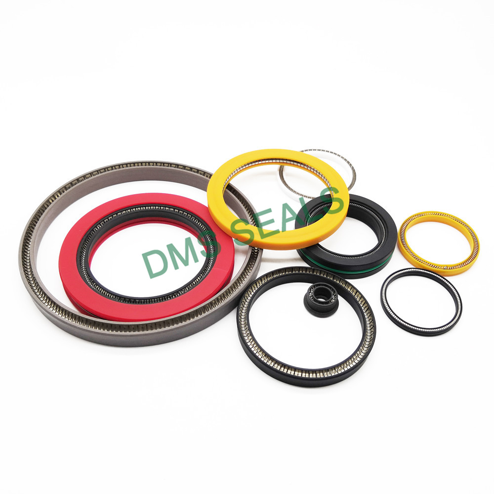 news-DMS Seal Manufacturer conical spring mechanical seal Supply for reciprocating piston rod or pis