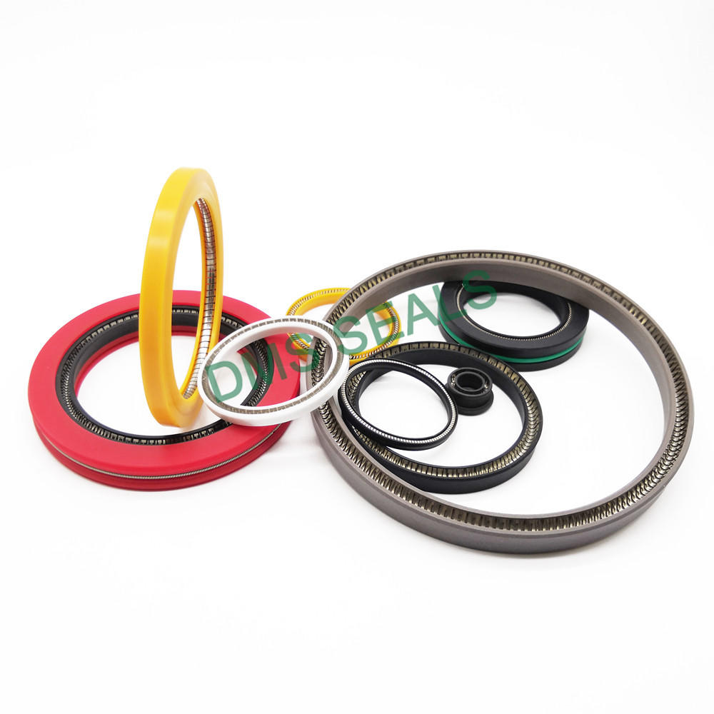Custom-made Spring Energized Seal