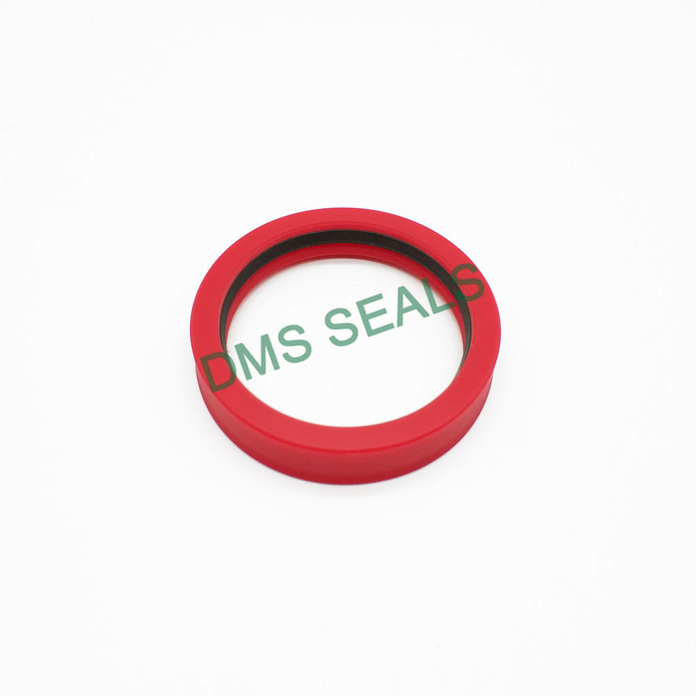 TDI - hydraulic cylidner rod tandem seal with low friction