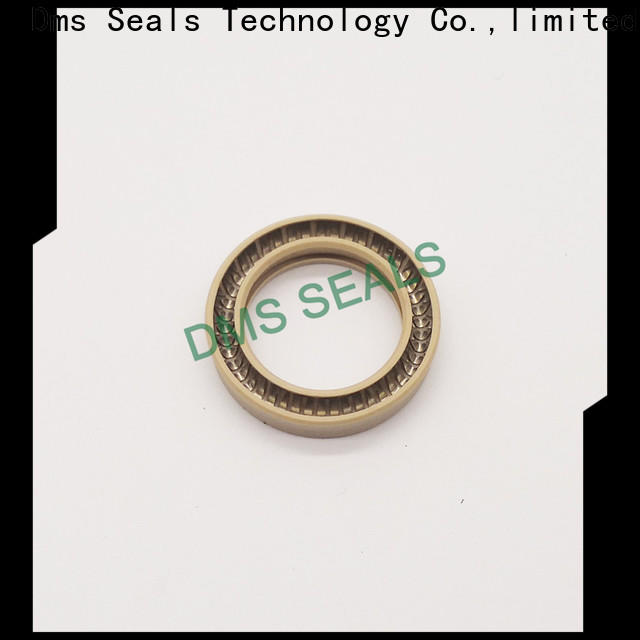 DMS Seal Manufacturer rotary lip seal application Supply for reciprocating piston rod or piston single acting seal