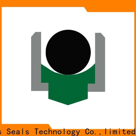 DMS Seal Manufacturer High-quality rotary lip seal application for business for construction machinery