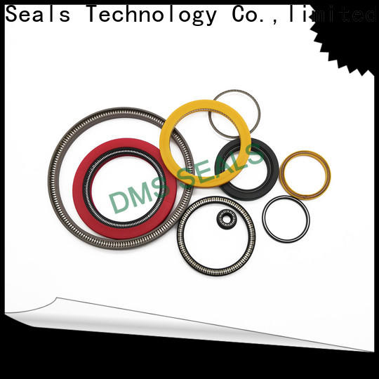 DMS Seal Manufacturer rotary lip seal application company for reciprocating piston rod or piston single acting seal
