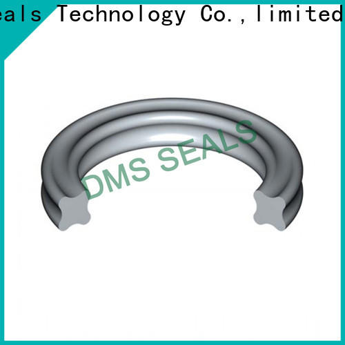 DMS Seal Manufacturer Best o ring coating in highly aggressive chemical processing