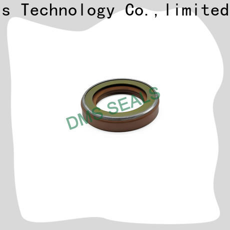 DMS Seal Manufacturer piston oil seal with integrated spring for sale