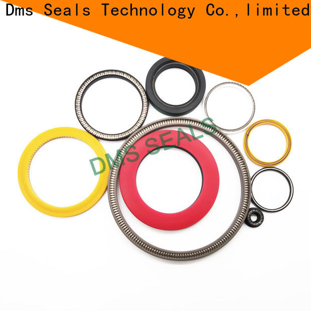 DMS Seal Manufacturer garter spring seal company for aviation