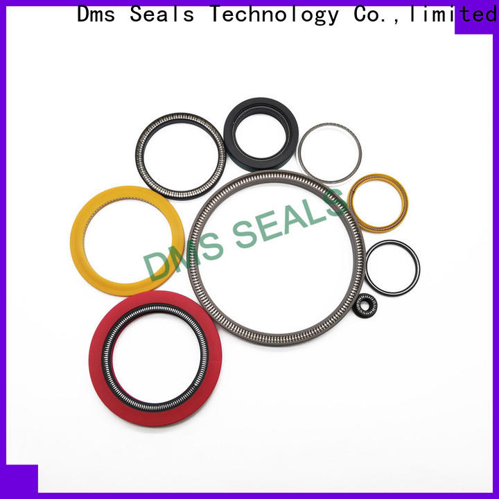 DMS Seal Manufacturer oil seal spring manufacturers for reciprocating piston rod or piston single acting seal