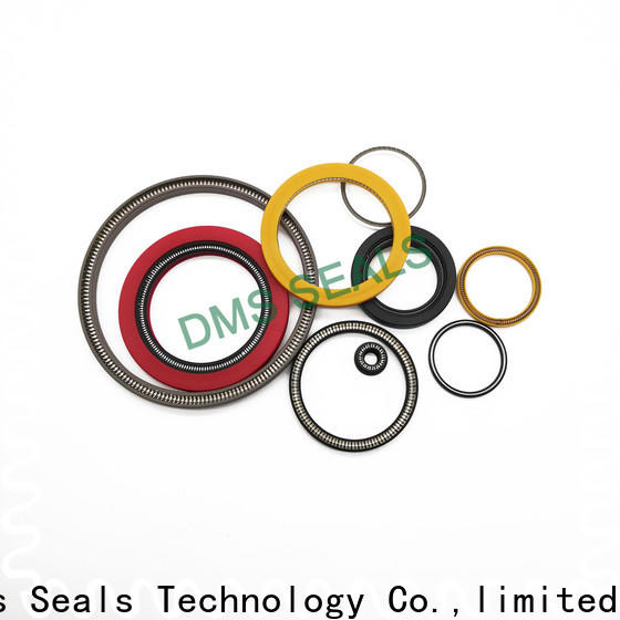 DMS Seal Manufacturer spring energized seals company for reciprocating piston rod or piston single acting seal