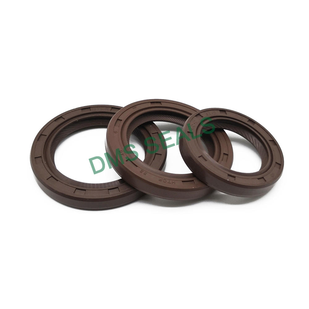 High Quality Oil Resistant Rotary Shaft Seal Doublp Lip Skeleton Rubber Htcr Oil Seal with Spring