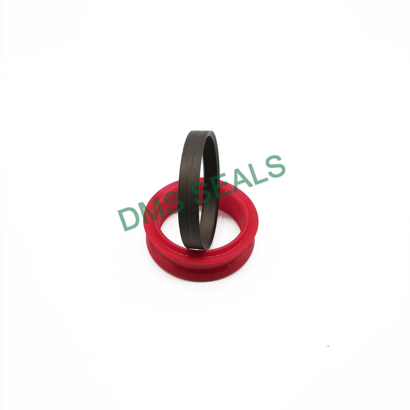 Combination Seal Ddma in-Line Seal for Various Liquid Applications