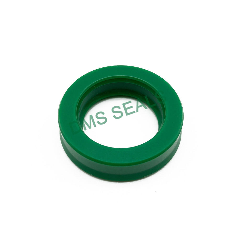 BS- Good wear resistance type piston rod seal