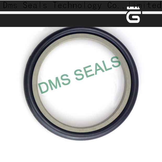 DMS Seal Manufacturer compact rubber seal strip suppliers supplier for larger piston clearance