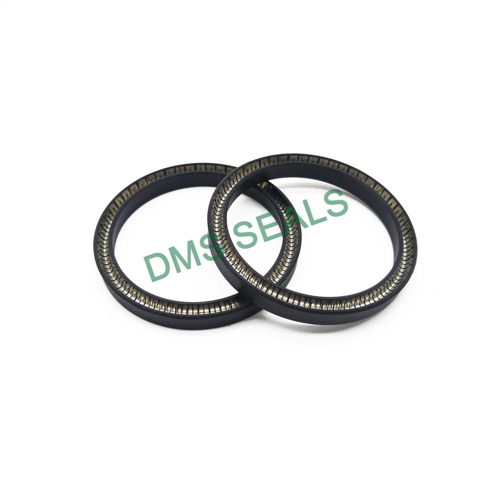 High Quality Good Performance Custom-Made Spring Energized Seal-T01