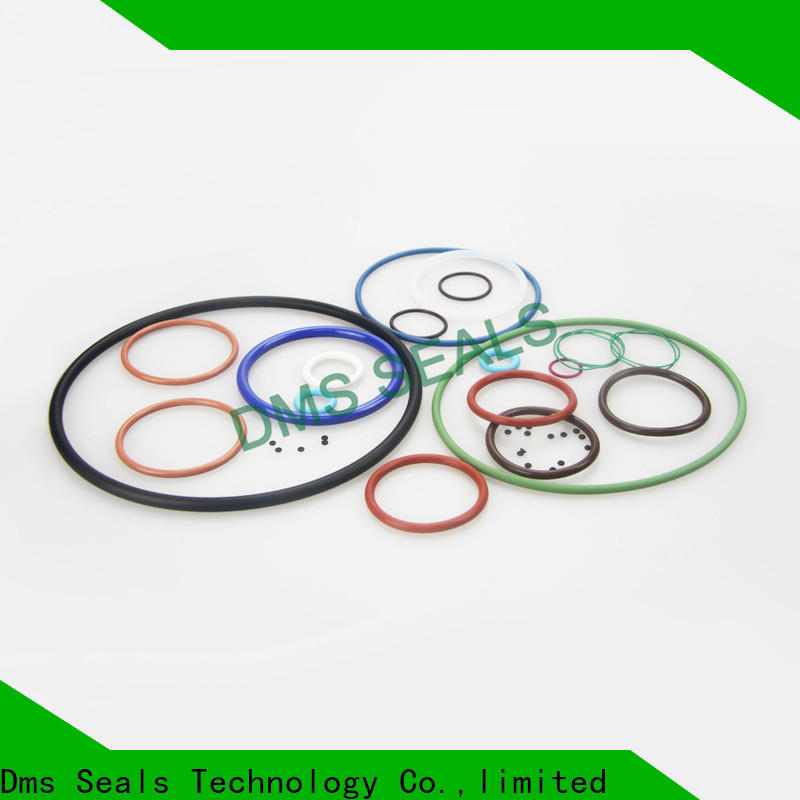 DMS Seal Manufacturer buy rubber ring factory in highly aggressive chemical processing