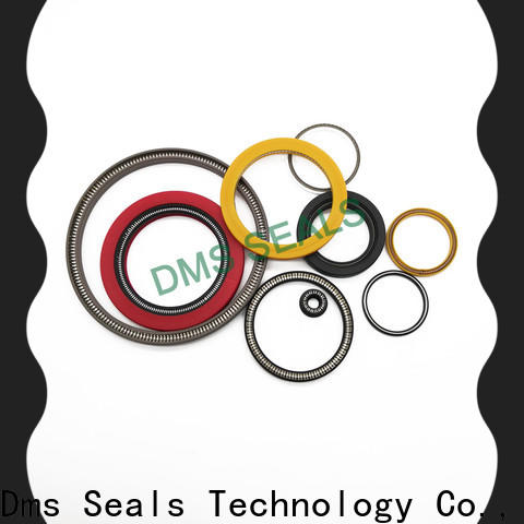 DMS Seals Best spring loaded double lip seal for business for aviation
