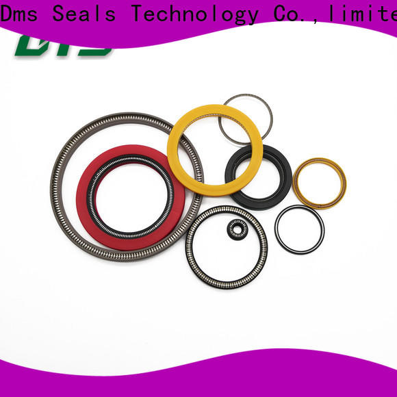DMS Seals energized seal wholesale for choke lines