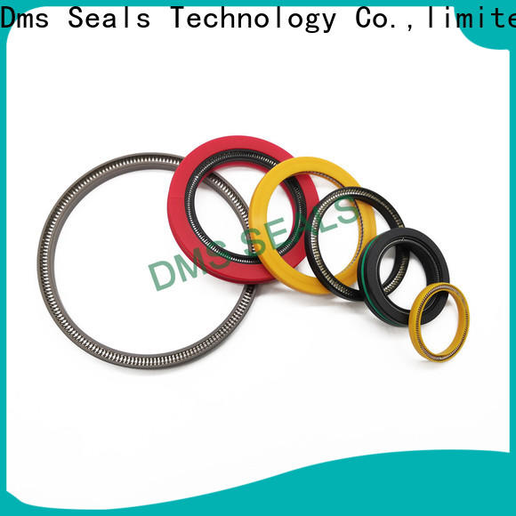 DMS Seals Latest spring energized ptfe seal cost for choke lines