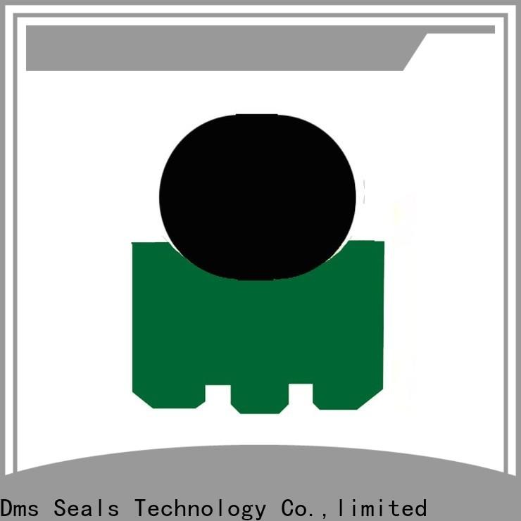 DMS Seals rotary seals manufacturer Supply for automotive equipment