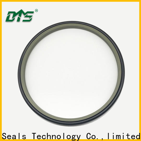 DMS Seals rubber wiper seal factory for hydraulic cylinder
