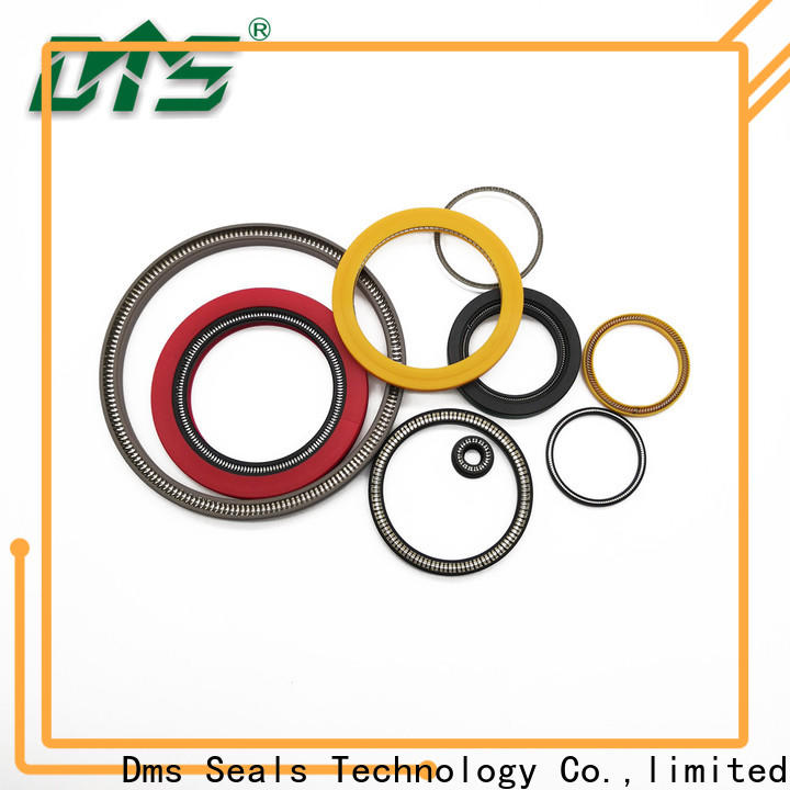 DMS Seals Customized spring energized ptfe seal wholesale for valves