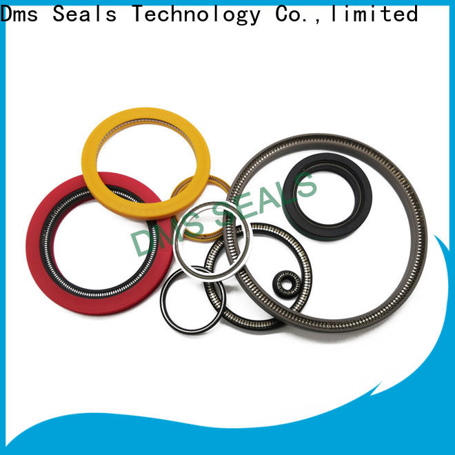DMS Seals Best energized seal for valves
