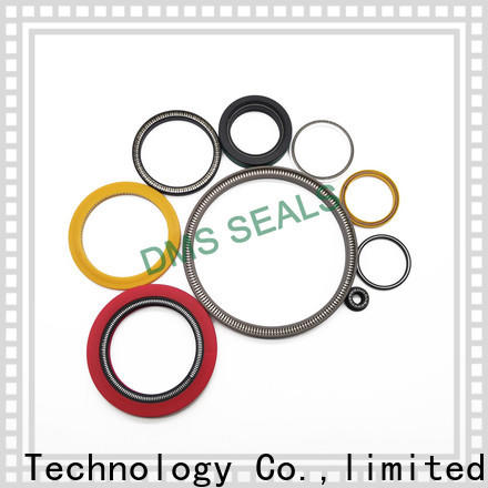 DMS Seals Quality spring energized ptfe seal wholesale for cementing