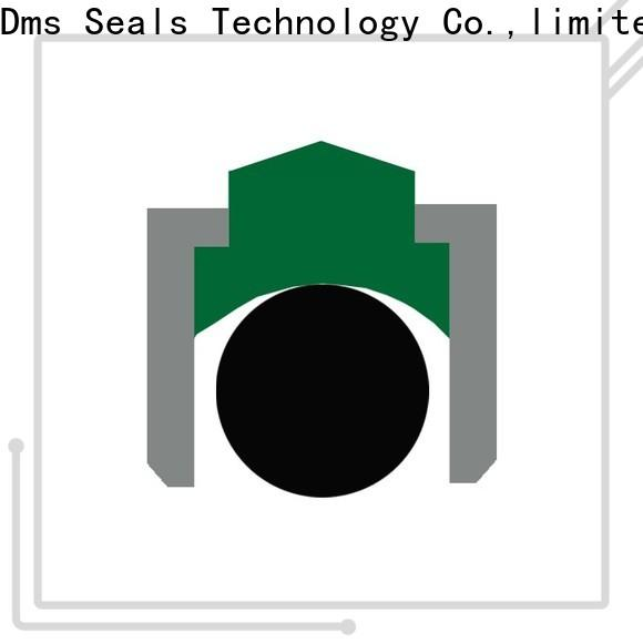 DMS Seals High-quality simmering oil seal factory for automotive equipment