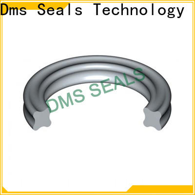 DMS Seals ring suppliers factory for sale
