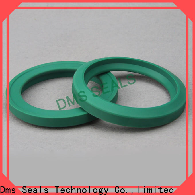 DMS Seals lip seal suppliers o ring for piston and hydraulic cylinder