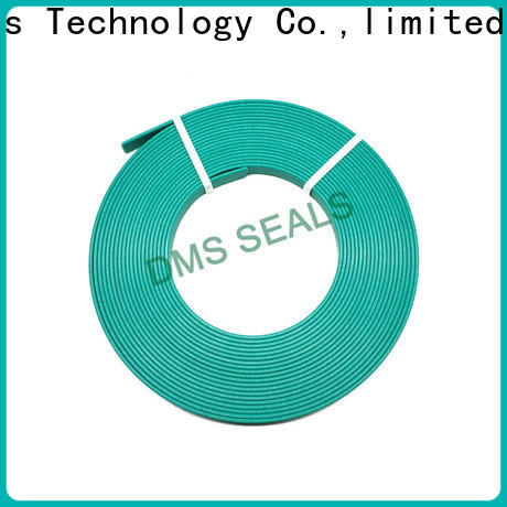 DMS Seals High-quality bearing manufacturing machine wear ring for sale