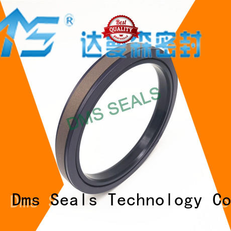 oring ptfe seal DMS Seal Manufacturer Brand pneumatic piston seals factory