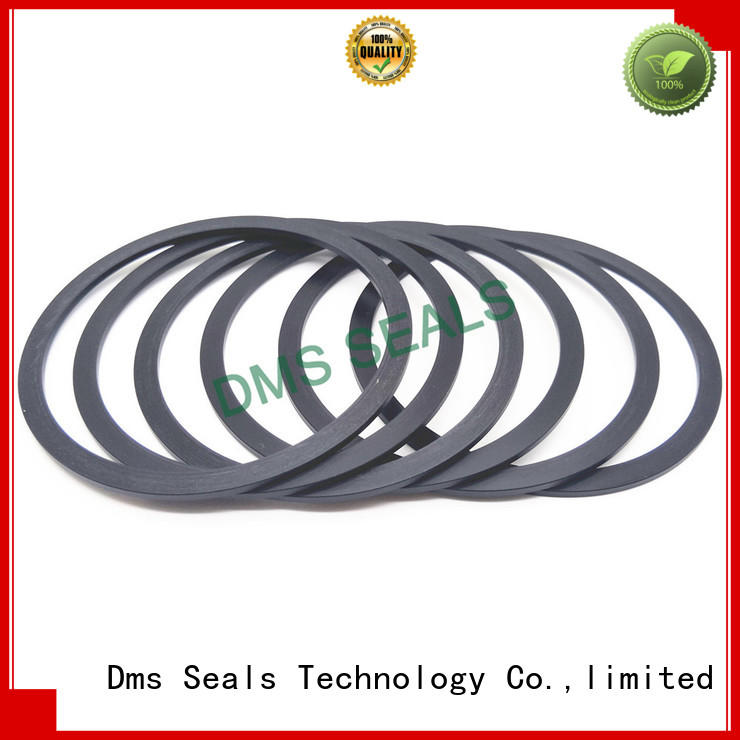 DMS Seal Manufacturer custom gaskets torque for preventing the seal from being squeezed