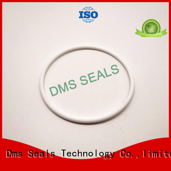 DMS Seal Manufacturer o ring kit manufacturer with a diisocyanate or a polymeric isocyanate in highly aggressive chemical processing