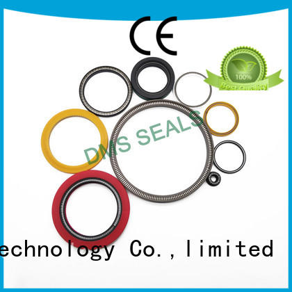 mechanical shaft seals springs Supply for reciprocating piston rod or piston single acting seal