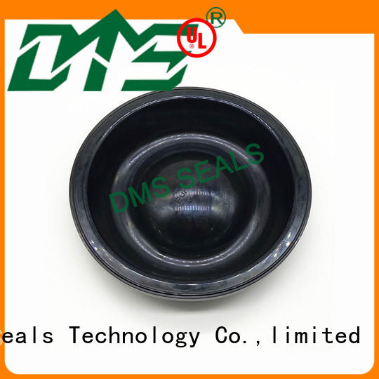 DMS Seal Manufacturer viton rubber oil seal suppliers for leakage gap