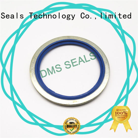 DMS Seal Manufacturer best bonded piston seal for business for fast and automatic installation