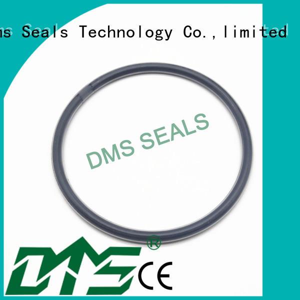 oil seal ring oring seal spring Warranty DMS Seal Manufacturer