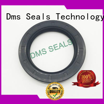 DMS Seal Manufacturer primary rubber oil seal with low radial forces for housing