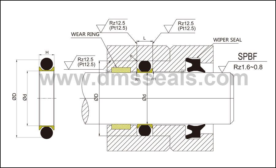 DMS Seal Manufacturer-Rod Seals Manufacture | Spnc - Ptfe Hydraulic Rod Seal With Nbrfkm O-ring