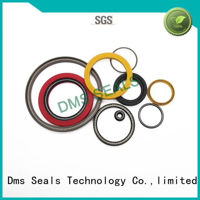 DMS Seal Manufacturer spring energized seal design for business for aviation