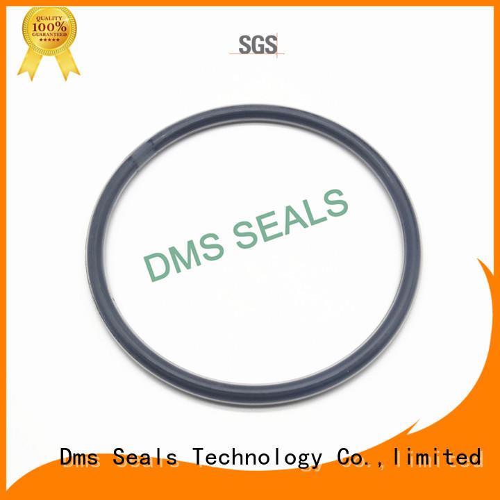 DMS Seal Manufacturer Brand spring oil seal ring hydraulic supplier