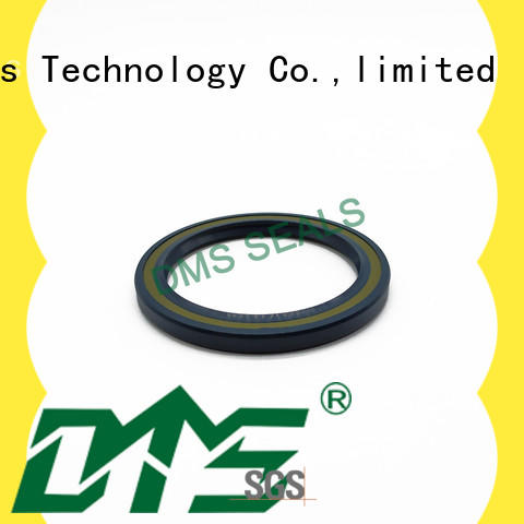 DMS Seal Manufacturer professional oil seal cost with a rubber coating for sale