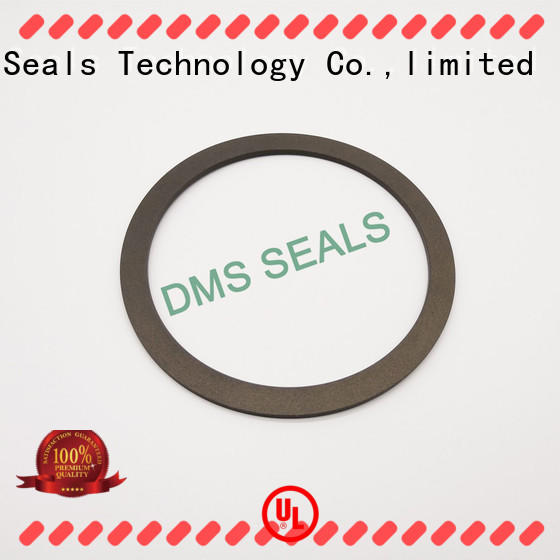 ptfe gasket material ring for liquefied gas DMS Seal Manufacturer