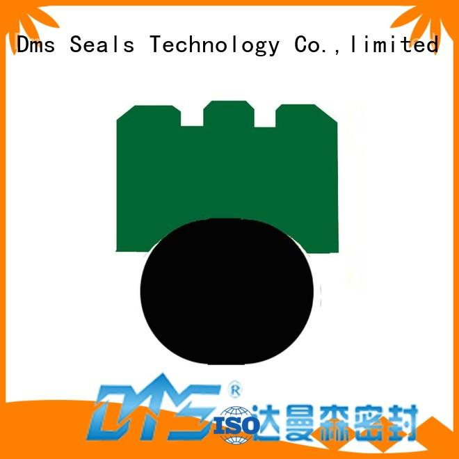 Hot seal rotary shaft seals ptfe DMS Seal Manufacturer Brand