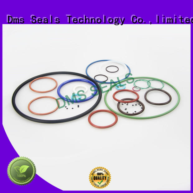 Latest oil seal ring for business in highly aggressive chemical processing