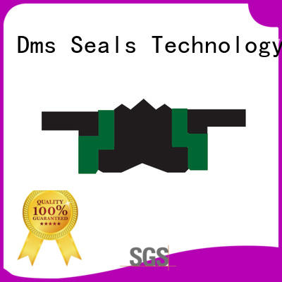 DMS Seal Manufacturer New hydraulic piston seals suppliers glyd ring for pneumatic equipment
