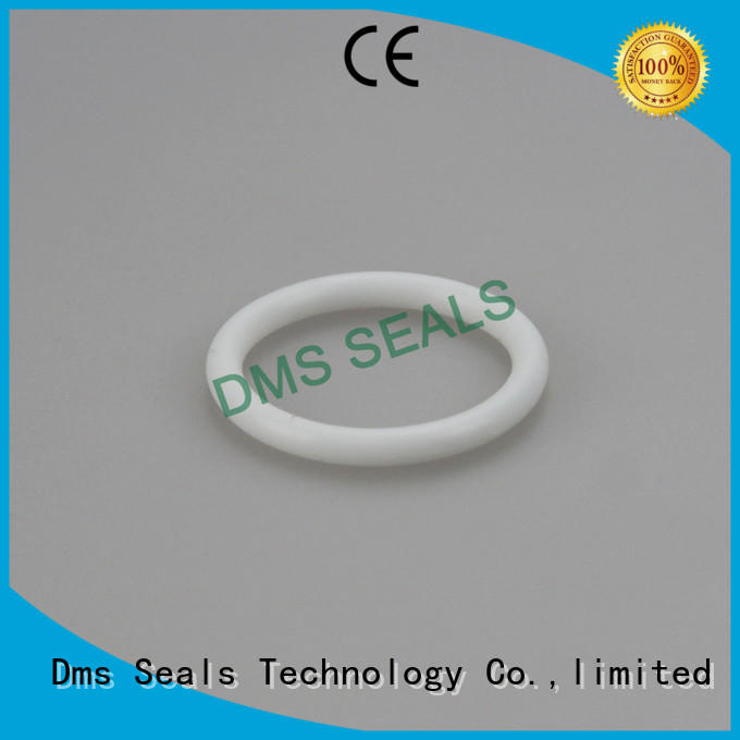 spring seal hydraulic o-ring seal oring DMS Seal Manufacturer