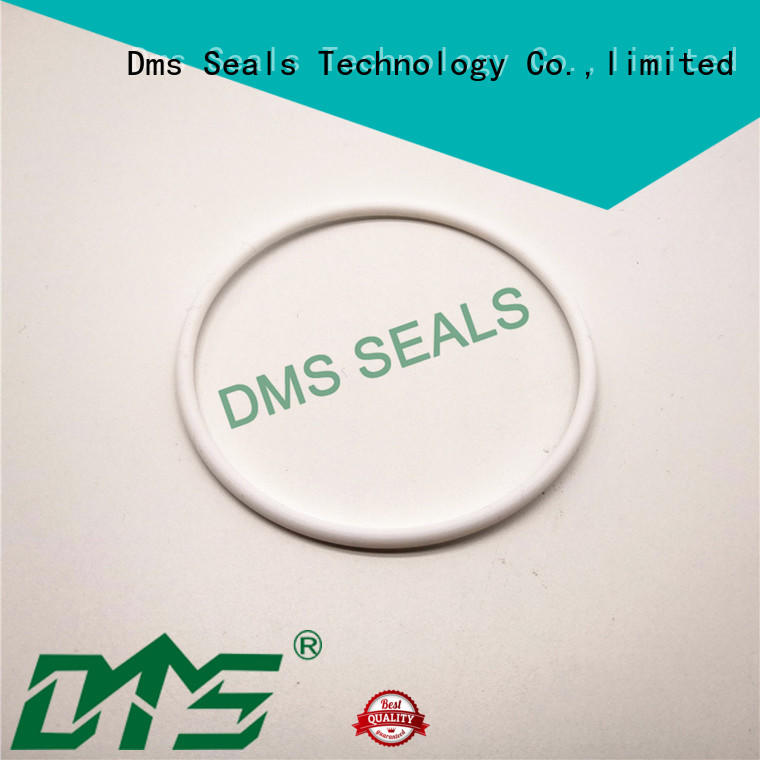 DMS Seal Manufacturer Top rubber o rings ace hardware manufacturers in highly aggressive chemical processing