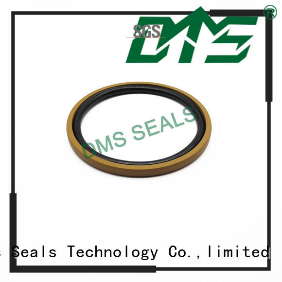 DMS Seal Manufacturer hydraulic oil seal manufacturers with ptfe nbr and pom for light and medium hydraulic systems